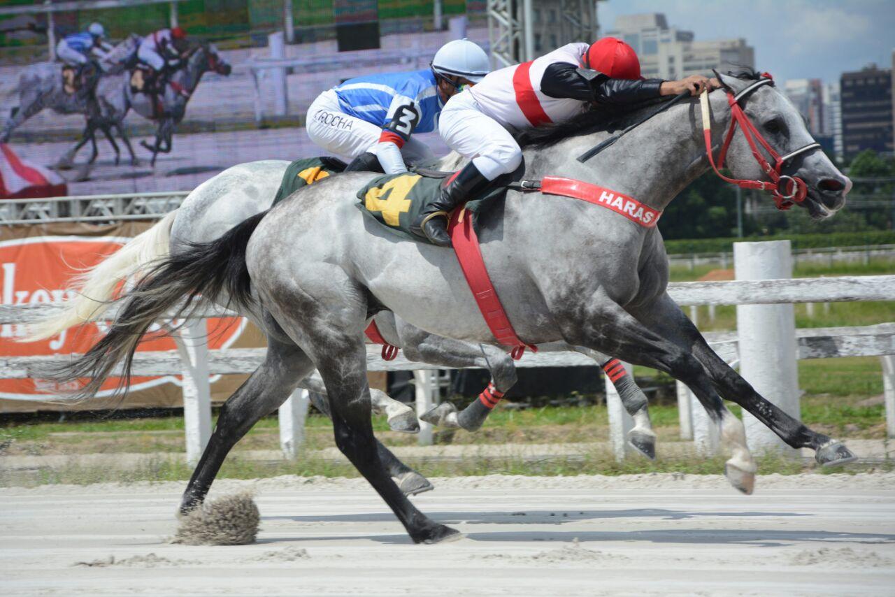 Kitikero leva a melhor sobre Wenzel Blade no Clássico Thomaz Teixeira de Assumpção Júnior