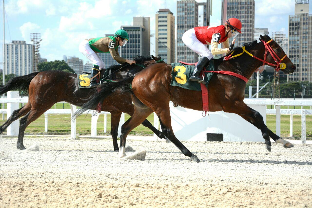 Com Knight of Glory, Josiane Gulart retorna com vitória à Cidade Jardim