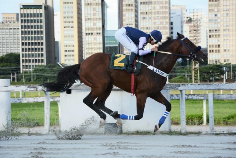 Orpheus levanta o Clássico Câmara Municipal de São Paulo arranhando o recorde