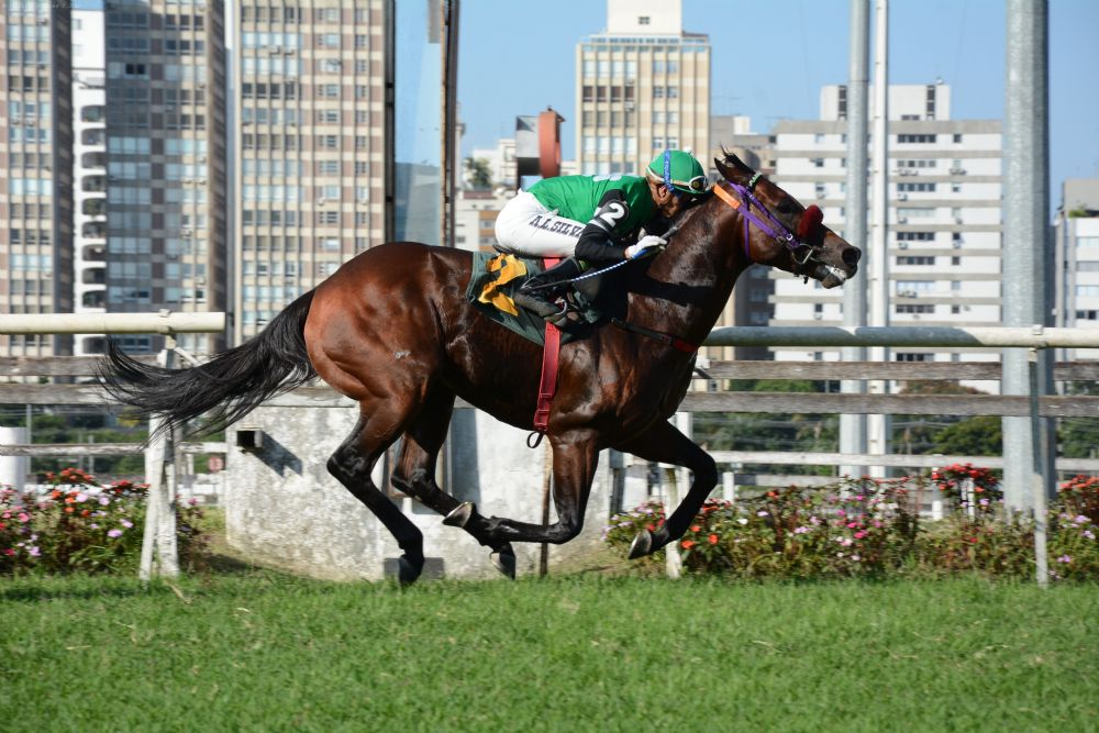 Jack Up surpreende no G.P.Presidente Waldyr Prudente de Toledo (G3)