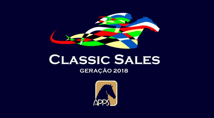 Leilão Classic Sales da APPS: quinta-feira, dia 2 de julho