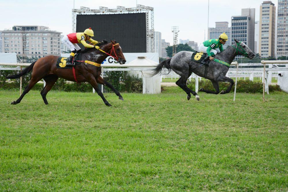 High Fly esmaga os rivais na Prova Especial Clackson